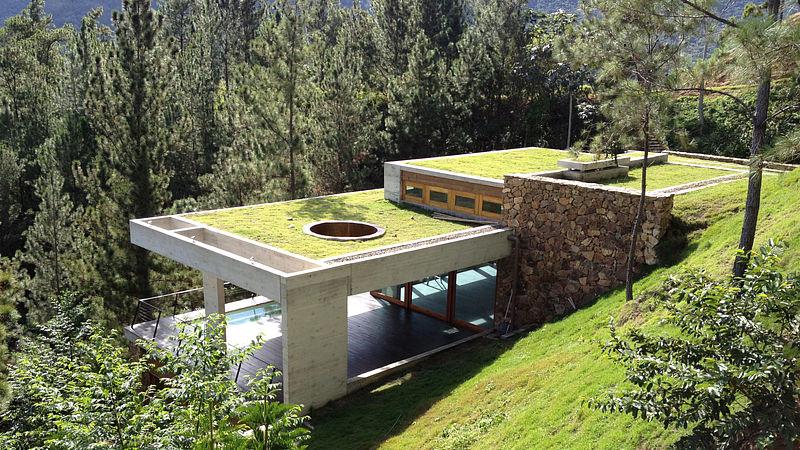 Architekt nechal dům ztratit v zahradě, aby vynikla její krása