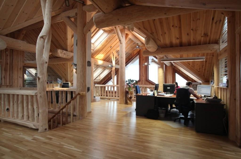 Nejlepší stavby ze dřeva